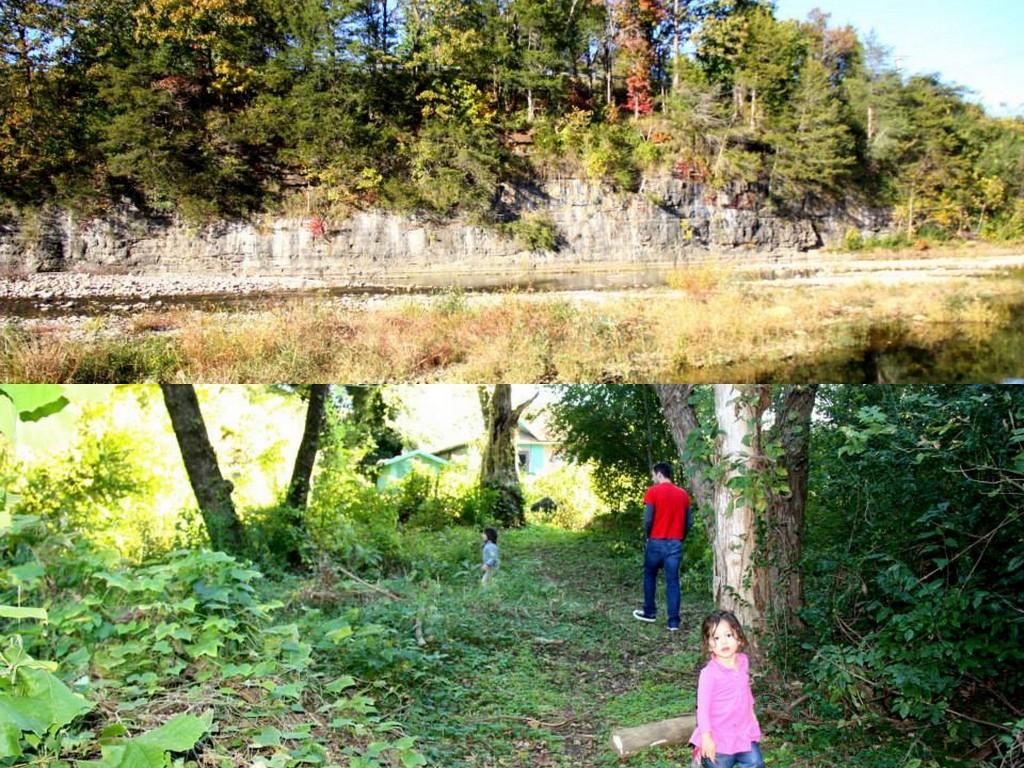 Our backyard - the Little Buffalo River